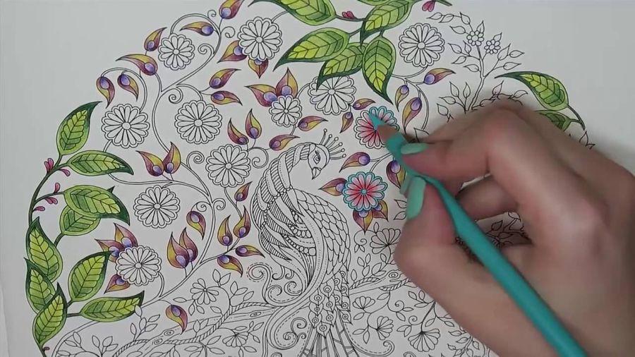 coloriage pour adulte